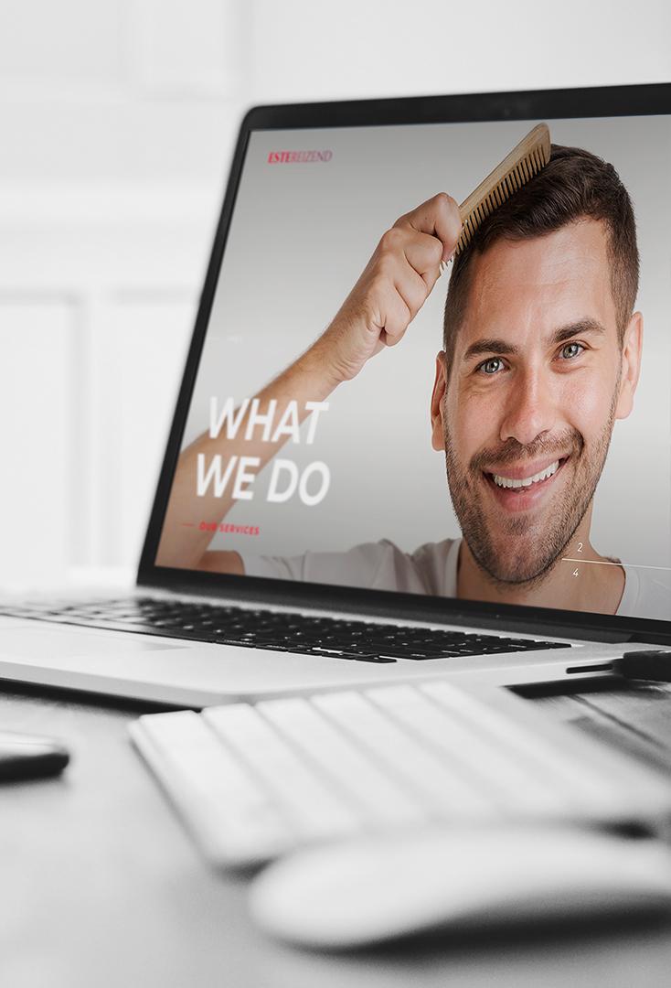 estereizend web design